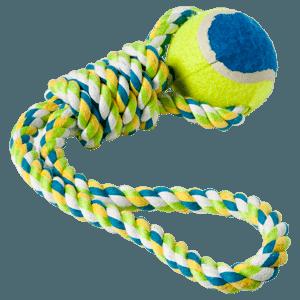 Puppy Opvoeden  Van pup tot volwassen hond