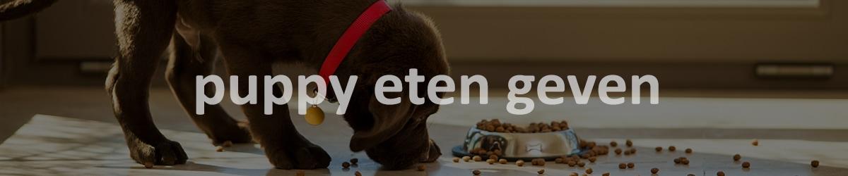 puppy eten geven blog