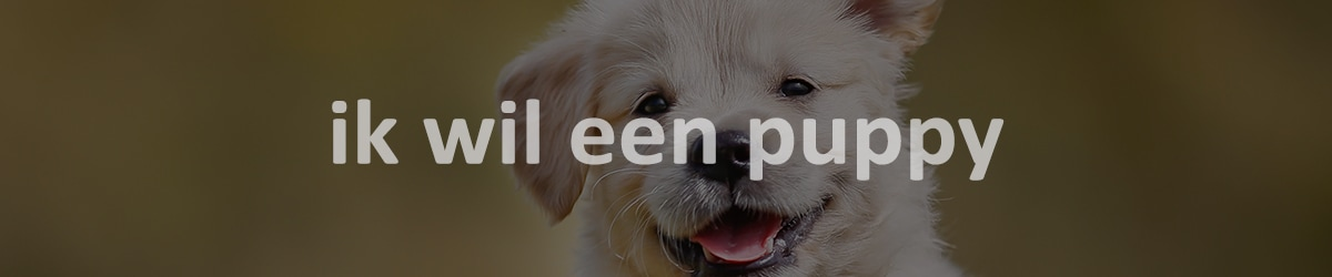 ik wil een puppy blog