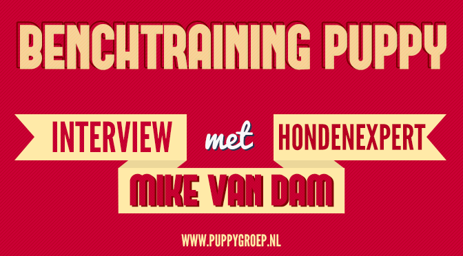 puppy opvoeden podcast aflevering 3