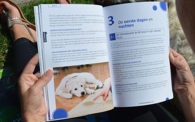 puppy opvoeding boek